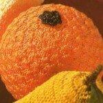 Плетение апельсинов.