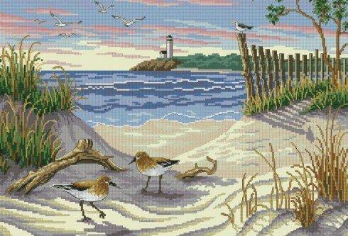 Птицы на пляжу.
